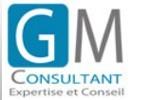 Annonce Assistant(e) D\'expert H/f Courbevoie de Gm Consultant - réf.502181270
